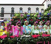 To nejlepší z Madeiry + KVĚTINOVÝ FESTIVAL