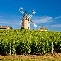 Francie a gurmánské zážitky