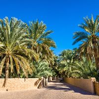 Spojené arabské emiráty (Al Ain)
