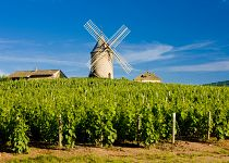 Gurmánské zážitky do Francie (Paříž)