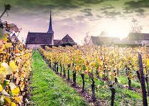 Francie (Alsasko)