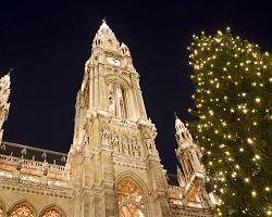 Vánoční strom u vídeňské radnice