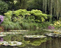 Monetova zahrada v Giverny