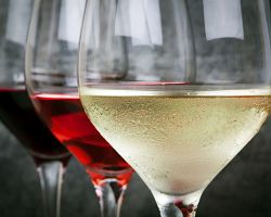 Ochutnávka vín od místních vinařů