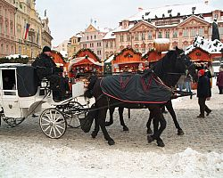 Fiakry v době adventu v Praze