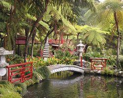 Nádherné tropické zahrady