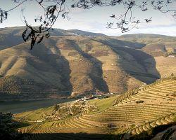 Douro patří k nejkrásnějším místům