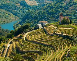 Vinařská oblast Alto Douro