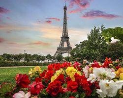 Eiffelova věž s květinovou parádou