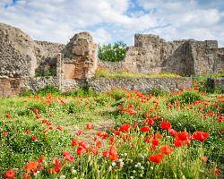 Soulad historie a přírody v Pompejích