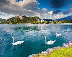 Jezero Bled s Bledským hradem v pozadí