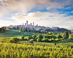 San Gimignano obklopeno vinicemi