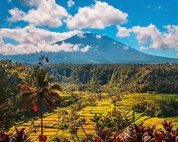 Sopečná hora Agung a rýžová pole na Bali