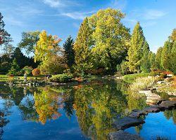 Japonská část botanické zahrady ve Wroclawi