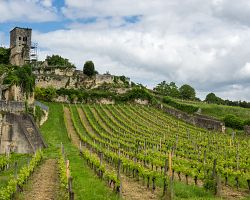 Vinice a městečko St-Émilion