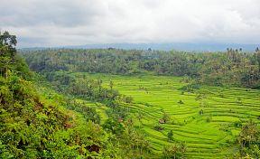 Ilustrace Indonésie