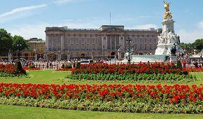 Pohled na Buckinghamský palác