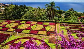 Nádherné zahrady Funchalu