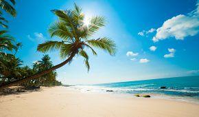 Nádherné tropické pláže na Srí Lance