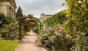 Botanický ráj Jardin des Plantes