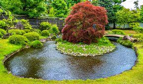 Tradiční japonská zahrada v parku Kóko-en