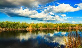 Přírodní krásy parku Everglades