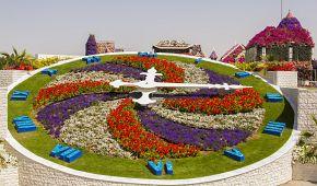 Exotická květinová zahrada v poušti Miracle garden