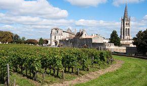 Vinice obklopují městečko St-Émilion