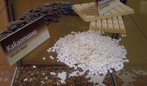Čokoláda všude kam se podíváte