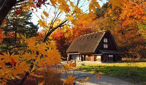 Domky v oblasti Shirakawa