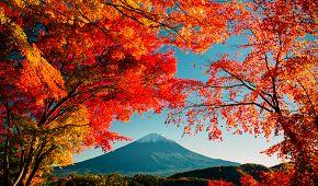 Podzimní hora Fudži