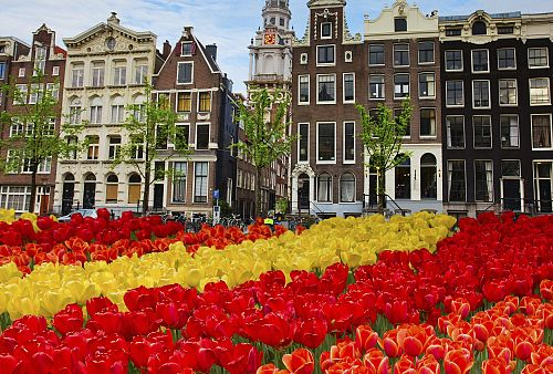 To nejlepší z Amsterdamu + HAAG (letecky z Prahy)