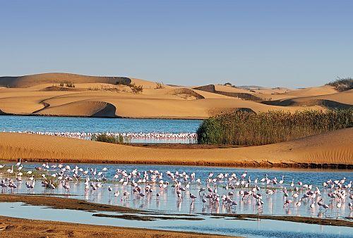 To nejlepší z Namibie + SAFARI V PARKU ETOSHA + KOČOVNÝ KMEN HIMBA