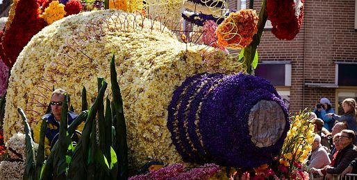 Keukenhof a květinové korzo