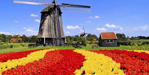 Holandsko autobusem