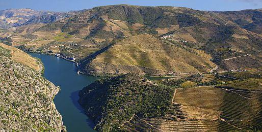 Zájezdy za vínem do Portugalska