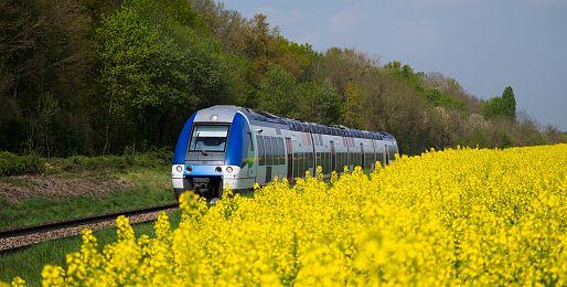 Poznávací zájezdy vlakem do Anglie