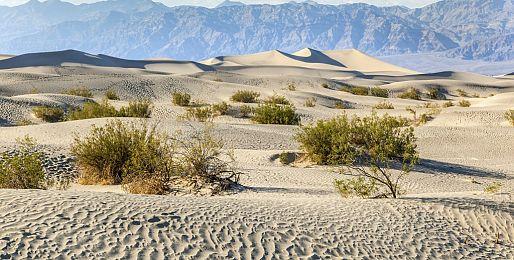 Zájezdy za přírodou do Death Valley