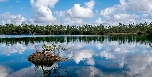 Florida a moře letecky