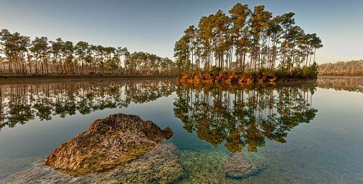 Zájezdy za přírodou na Miami