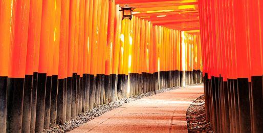 Poznávací zájezdy do Osaky