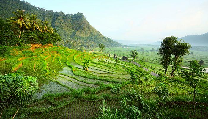 To nejkrásnější z Bali + MOŘE