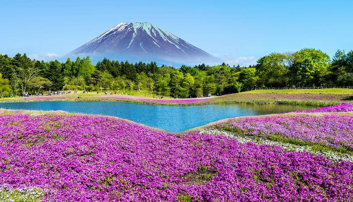 To nejlepší z Japonska + KVĚTINOVÝ FESTIVAL + TRADIČNÍ LÁZNĚ