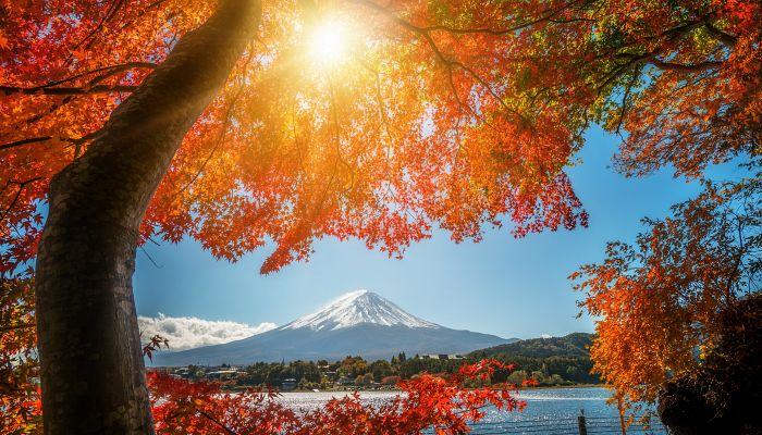 To nejlepší z Japonska + BAREVNÝ PODZIM + TRADIČNÍ LÁZNĚ