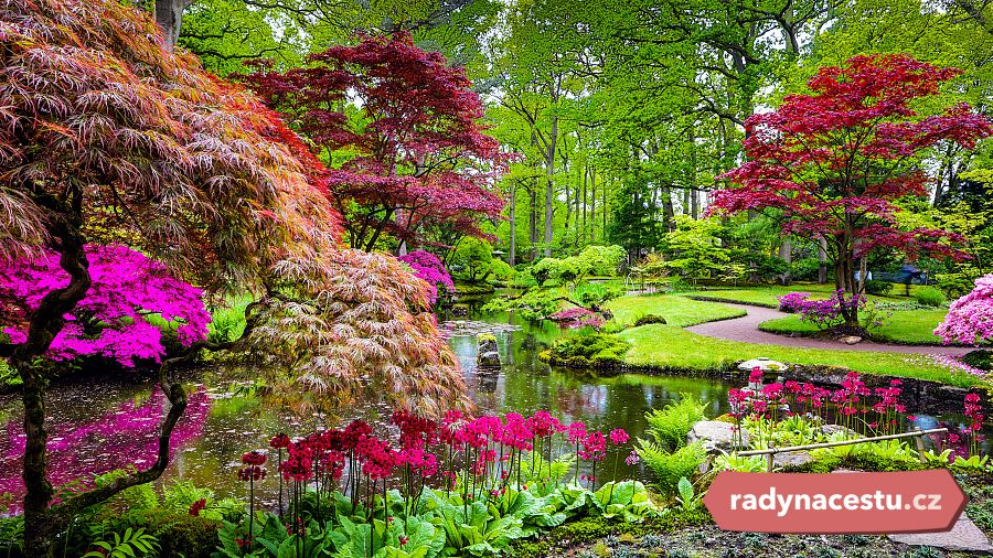 Image Result For Beautiful Wallpapers Of Flower Gardens