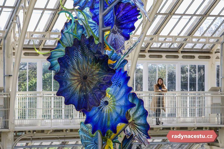 V Královských Botanických Zahradách V Kew Rozkvetly