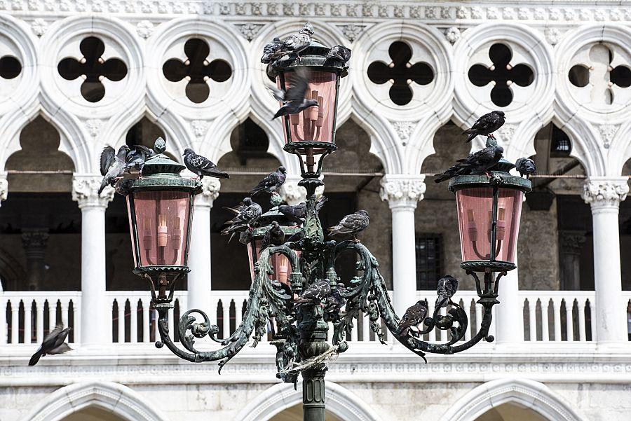 Benátky 7