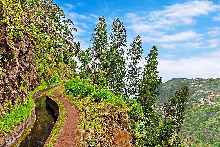 Madeira_levady.jpg