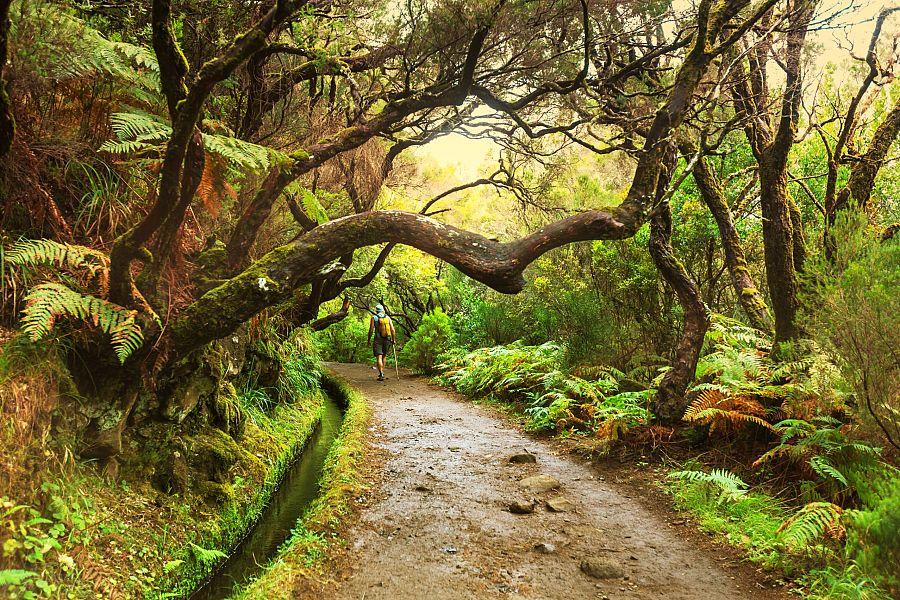Madeira_turistika.jpg