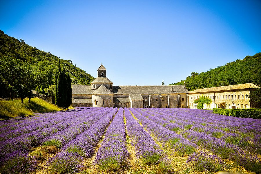 Provence_Senanque_2_Radynacestu_Pavel_Spurek.jpg